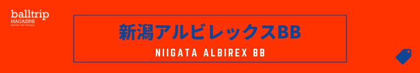 [balltrip]tag_新潟アルビレックスBB